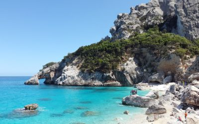 The regional cuisine: the variety of the Sardinian traditions