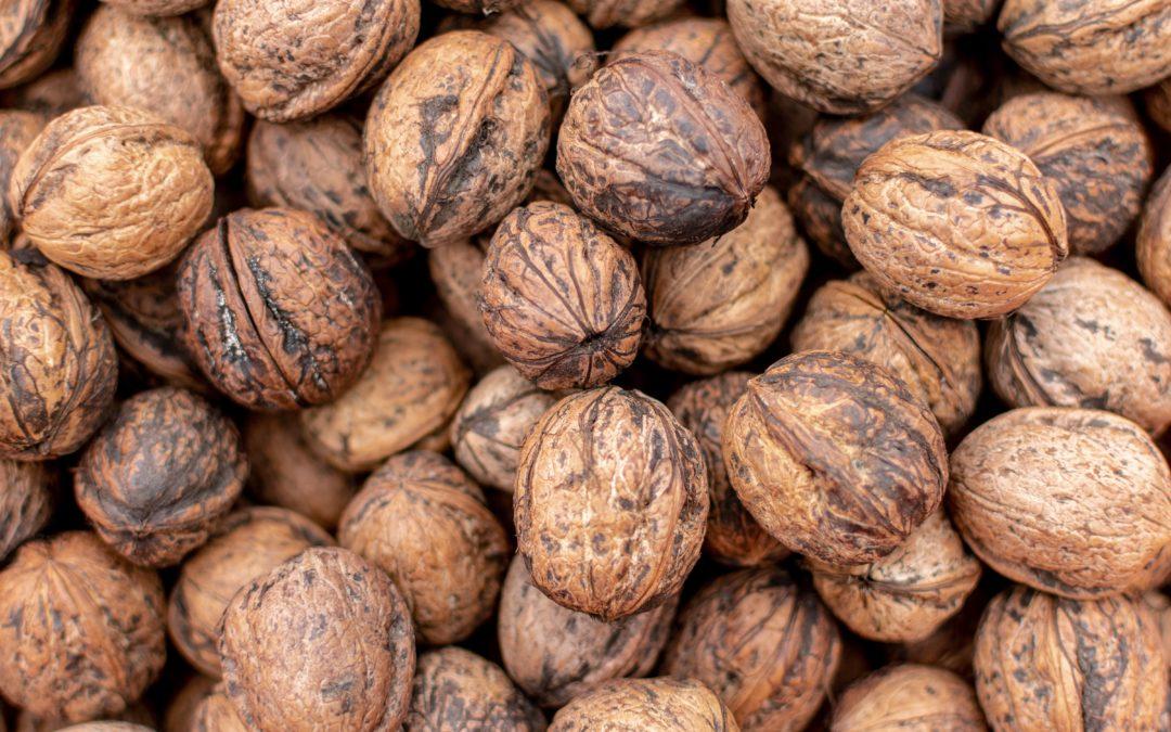 When life gives you walnuts, make nocino!