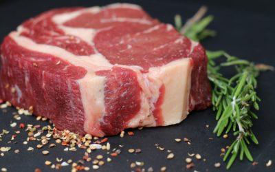 Chianina- perfect beef for Florentine steak