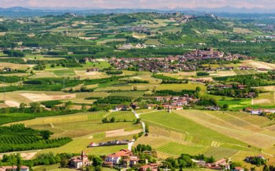The regional cuisine: welcome to Piedmont