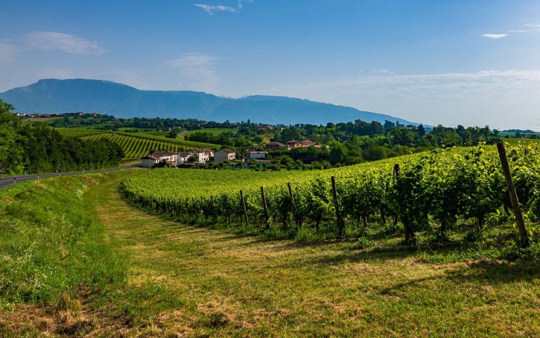 Valdobbiadene, the UNESCO valley of wonders where Prosecco was born